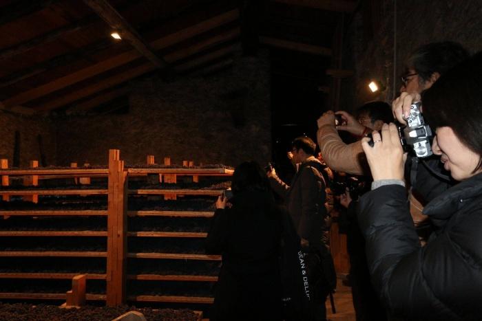 Visite alle cantine in Valtellina